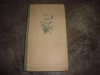 Lodní deník-R.Krátký, M.Šedý