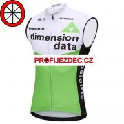 Vesta Dimension Data
